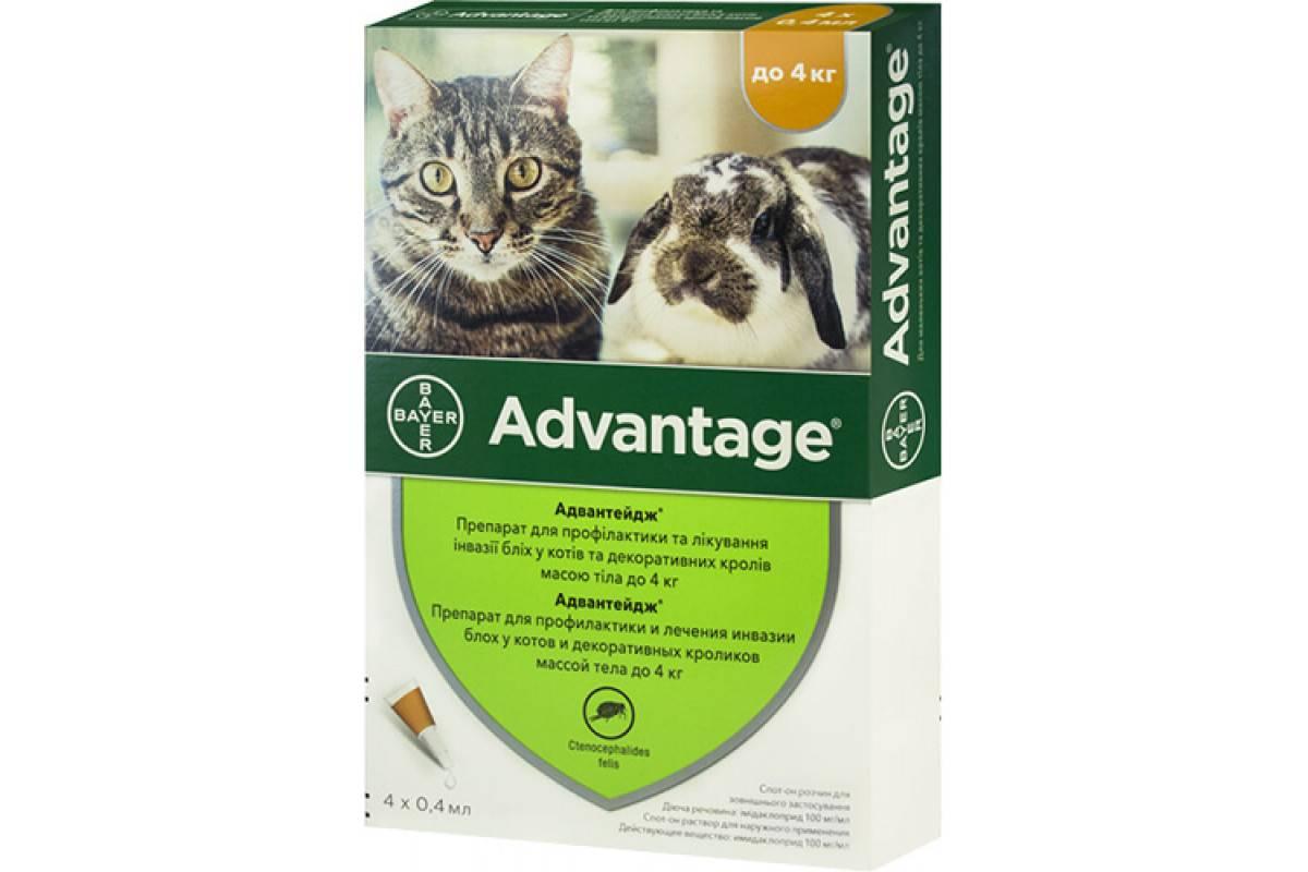 Адвантейдж для кошек более 4 кг - купить, цена и аналоги, инструкция по применению, отзывы в интернет ветаптеке добропесик
