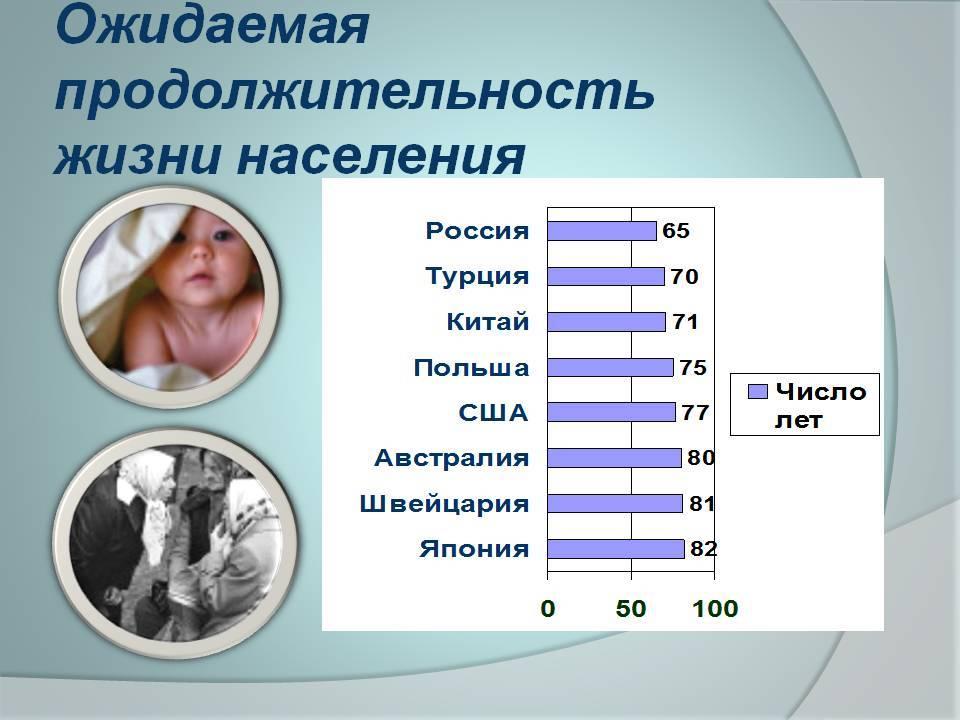 Сколько живут русские спаниели в домашних условиях