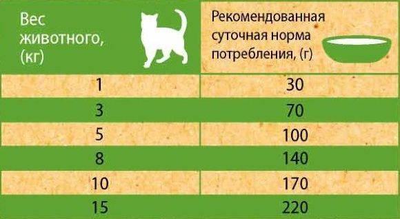 Корм для стерилизованных кошек: рейтинг лучших марок для кастрированных котов и котят, отзывы и советы ветеринаров. как правильно кормить?