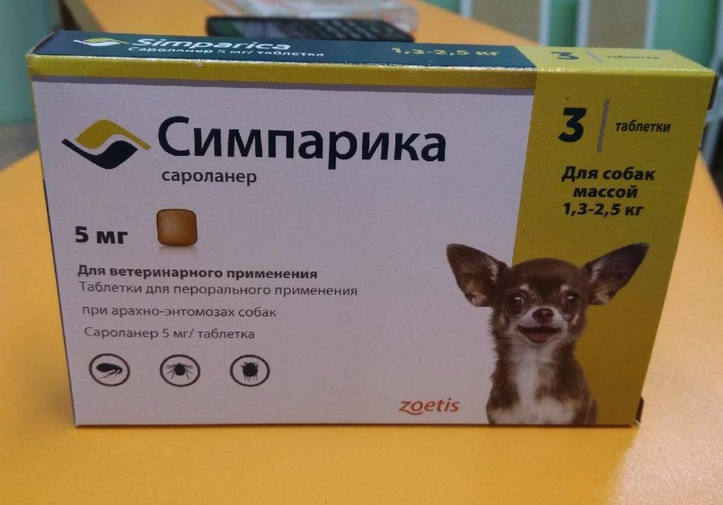 Таблетки симпарика от блох и клешей: инструкция по применению, как принимать, срок действия, побочные эффекты, с какого возраста принимать