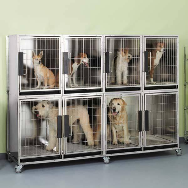 Клетки для собак (45 фото): большая клетка в квартиру своими руками. как сделать клетку-переноску для крупных домашних собак? оптимальные размеры деревянных и металлических клеток для маленьких собак