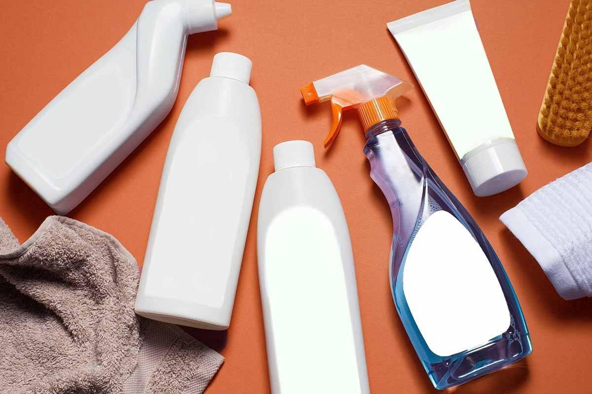10 способов избавиться от запаха кошачьей мочи в квартире