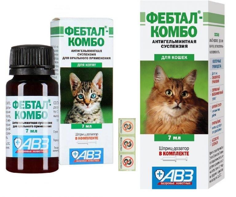 Антигистаминные препараты для кошек