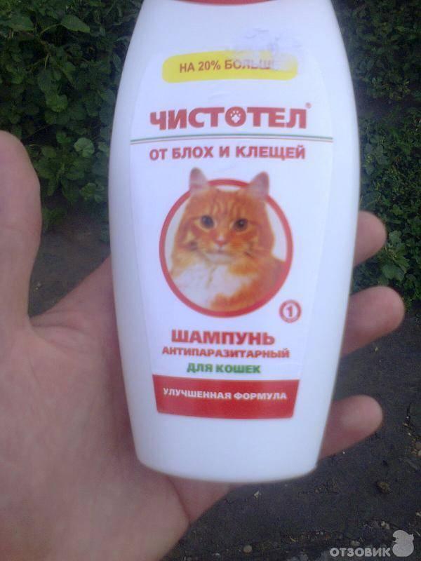 Шампуни от блох для кошек и котят
