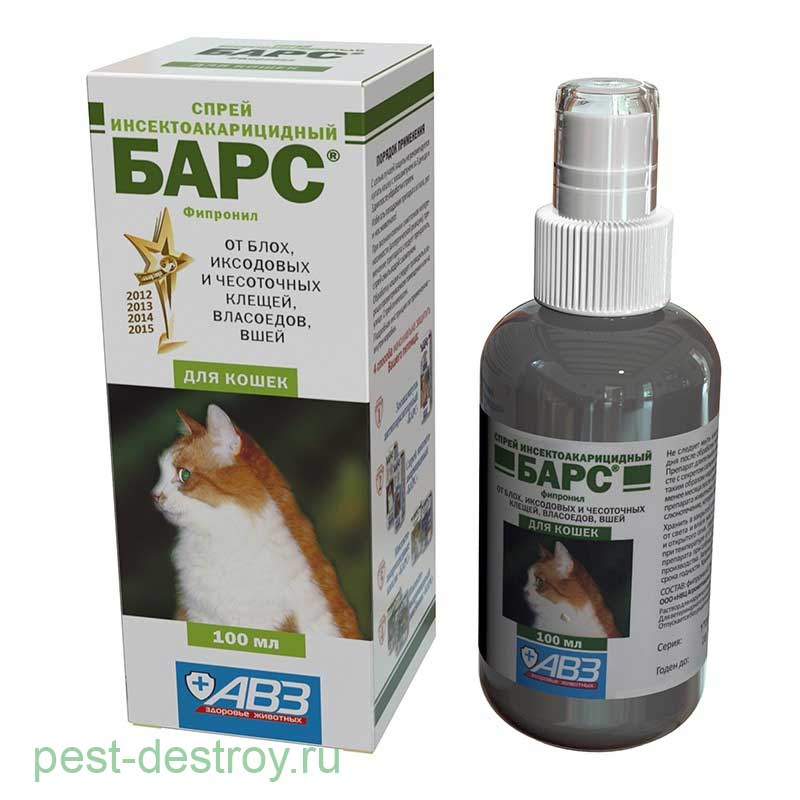 Блохи у кошки: симптомы и причины заражения, как вывести блох у кошки с помощью капель, спреев, шампуней и других средств, обработка помещения и профилактика