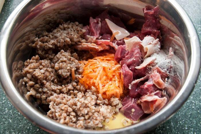 Правильное кормление собак говяжьим мясом: рассмотрим все нюансы