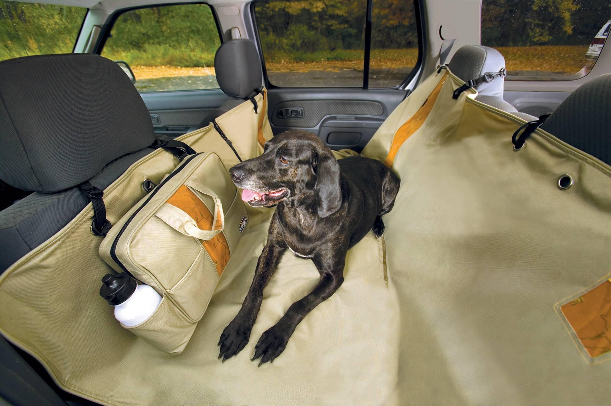 Назначение и разновидности автогамака на заднее сидение для перевозки собаки