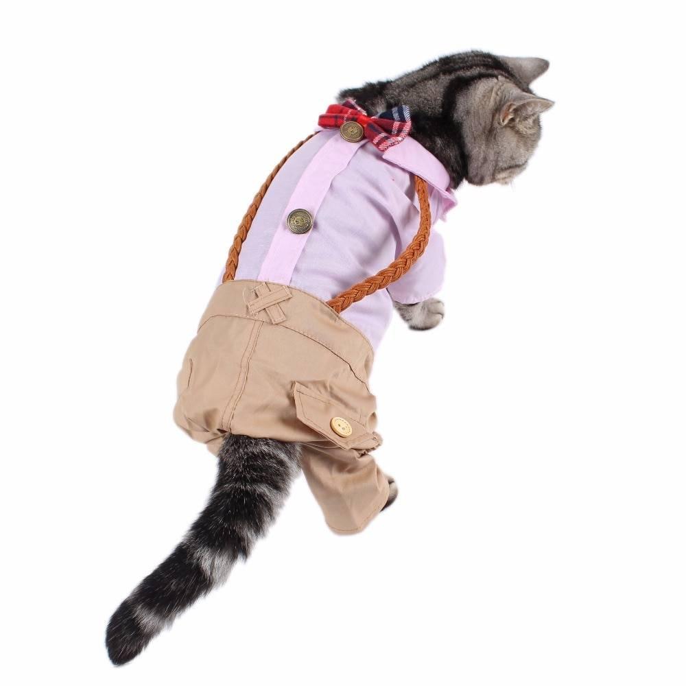 Одежда для котенка своими руками