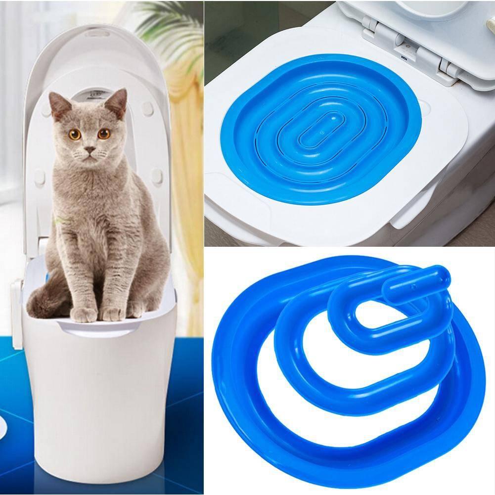 Как приучить кошку к унитазу после лотка в домашних условиях: видео