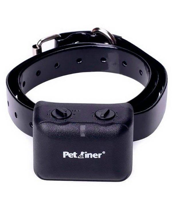 Что такое электроошейник с пультом и шокер для дрессировки собак