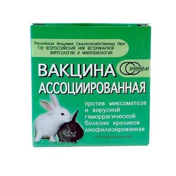 Вакцина, ассоциированная против колибактериоза, стрептококкоза и вирусной геморрагической болезни кроликов. российский патент 2012 года ru 2443775 c1. изобретение по мкп c12n1/20a61k39/295.