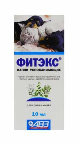 Фитэкс для собак: инструкция по применению, состав и эффективность