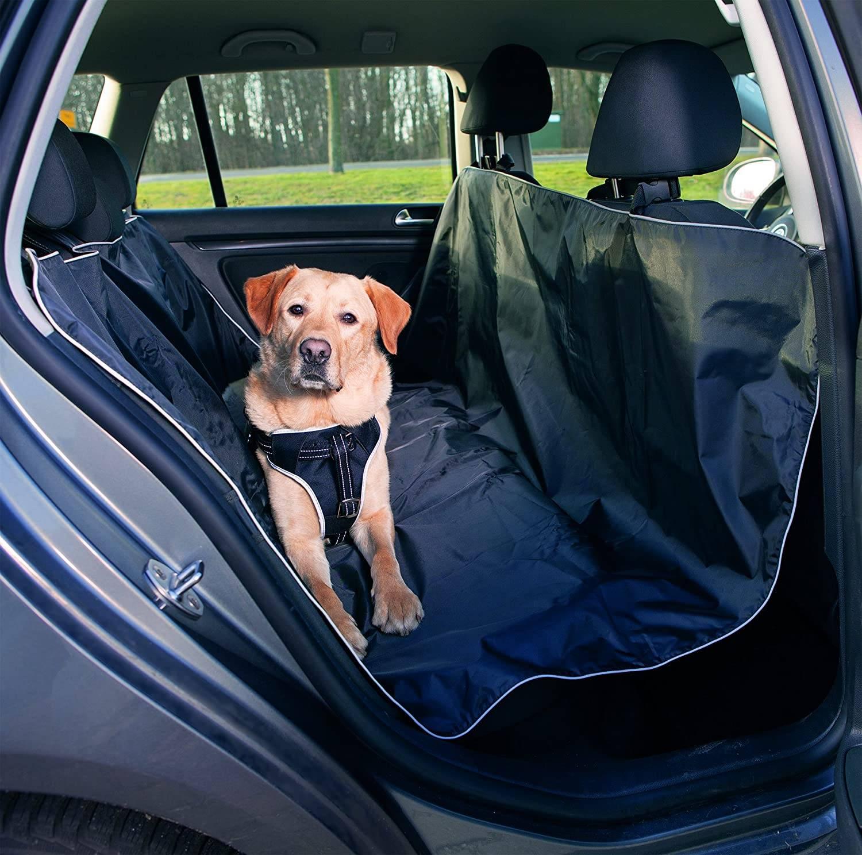 Для чего нужен автогамак для собаки: применение для перевозки и обзор