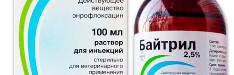 Инъекционный раствор для собак и кошек bayer байтрил 2,5%, 100 мл