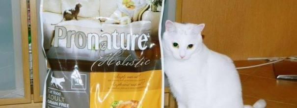 Обзор корма для кошек пронатюр (pronature): виды, состав, отзывы
