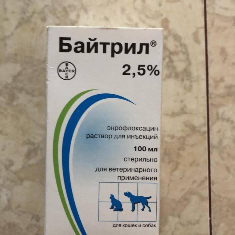 Ветеринарное лекарство байтрил 2,5%: инструкция по применению - вет-препараты