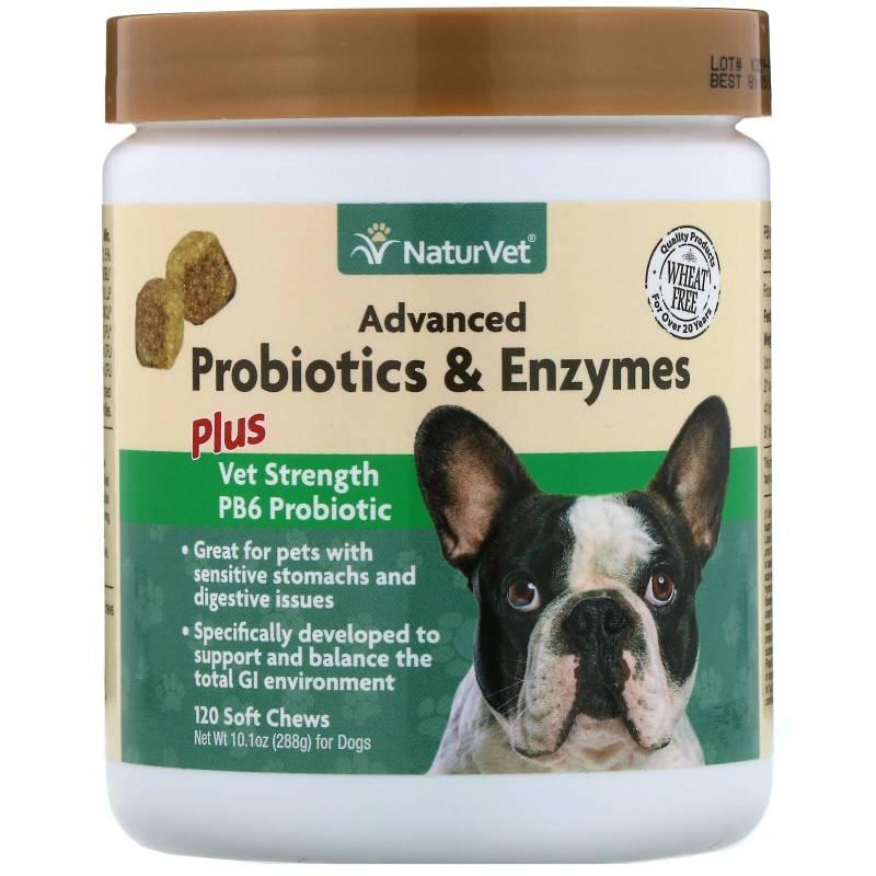 Пробиотики для собак и кошек