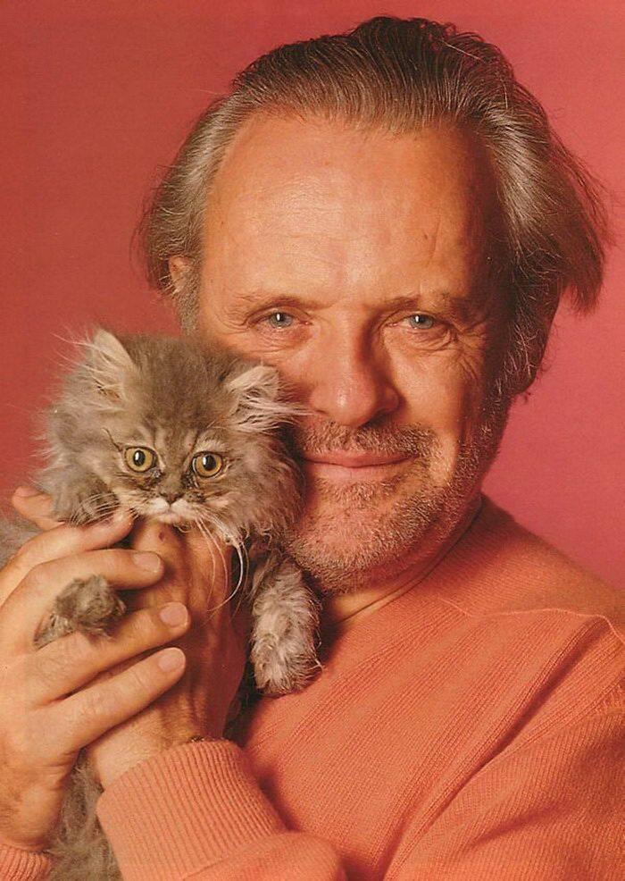 Те, кому служат звезды: любимые кошки мировых знаменитостей