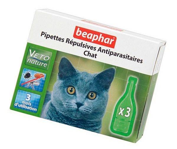 Инъекции (уколы) для кошек от блох