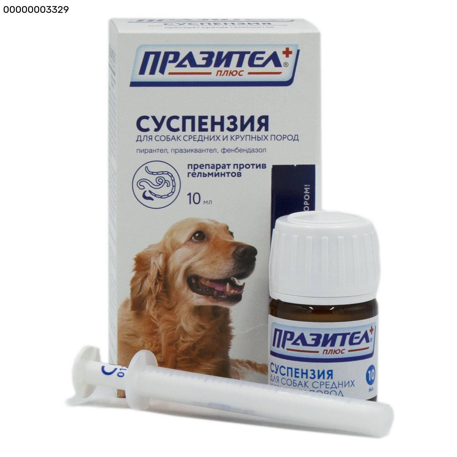 Празител для собак: стоимость, фармакологическое действие, отзывы ветеринаров - kupipet.ru