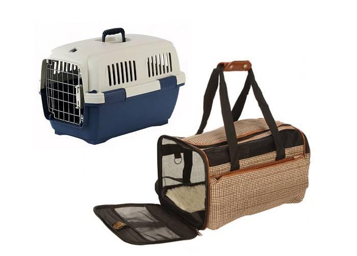 Перевозка животных в самолете в 2021 году: правила перевозки собак, кошек
