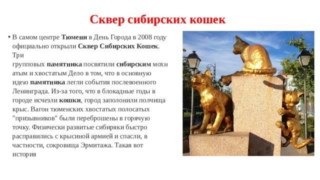 Парки тюмени - список с описаниями, фото, адресами