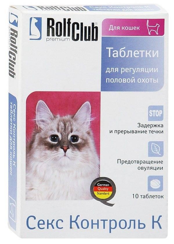 Первая течка у кошки. симптомы. как быть, чем помочь?