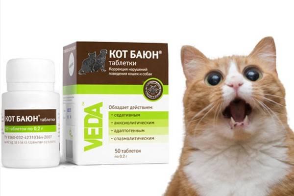 Кот баюн (настой) для котов, кошек и собак | отзывы о применении препаратов для животных от ветеринаров и заводчиков