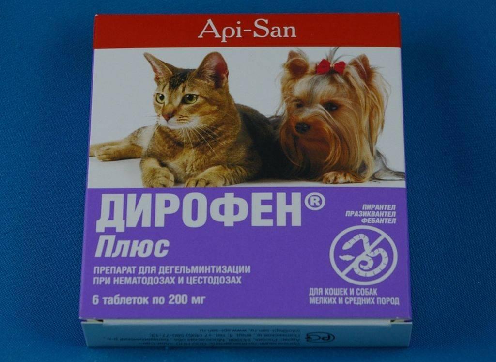 Дирофен для кошек:  инструкция по применению, цена, аналоги