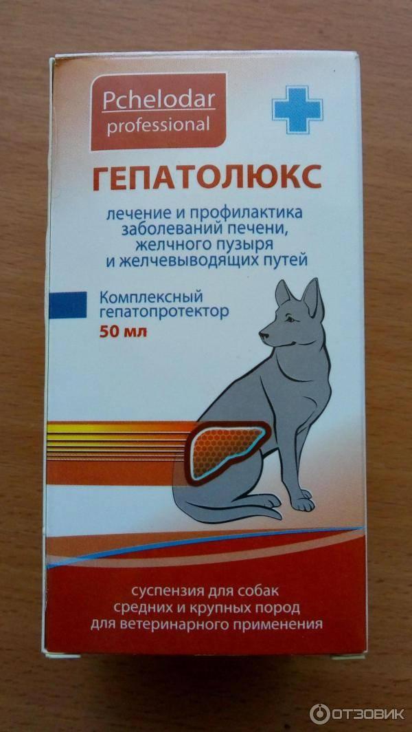 Гепатолюкс суспензия для кошек 25 мл - купить, цена и аналоги, инструкция по применению, отзывы в интернет ветаптеке добропесик