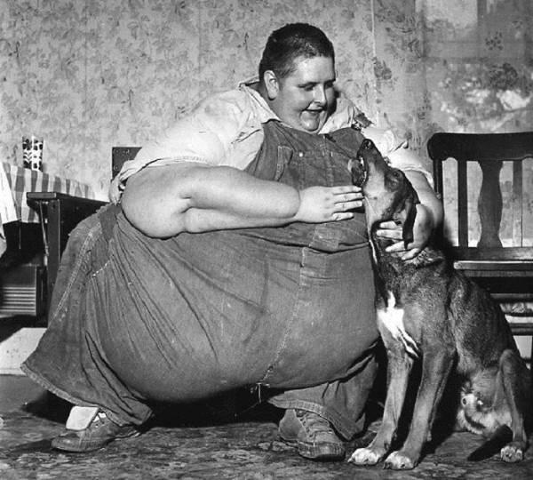 Сколько весит самый толстый домашний в мире кот | интересный сайт