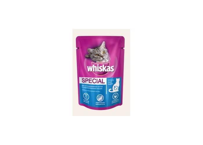 Рейтинг самых лучших влажных кормов для кошек