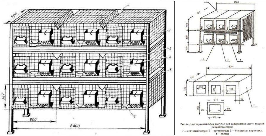 Чертежи с размерами клеток для разведения кроликов: изготовление своими руками