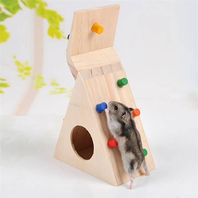 Самодельные игрушки для хомяка своими руками. как сделать лестницу для хомяка