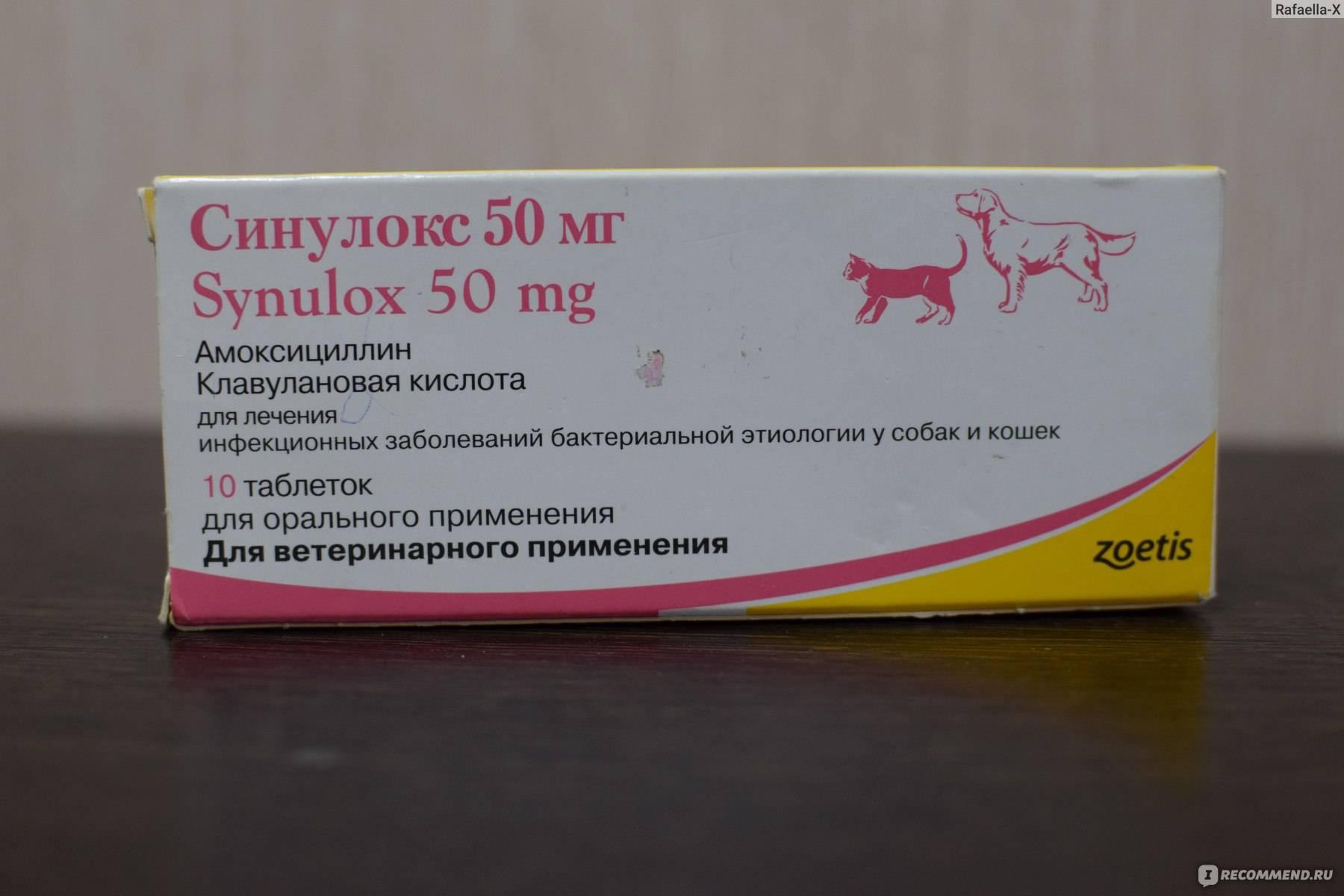 Амоксициллин таблетки 250мг