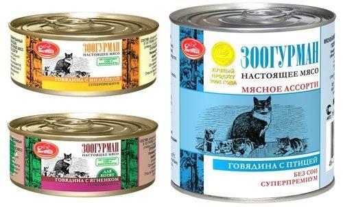 Флатазор — корм для кошек