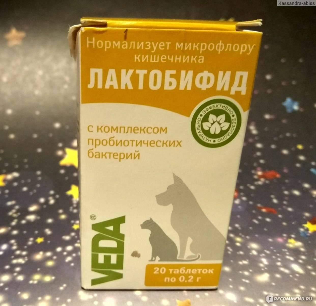 Кормовая добавка лактобифид для собак