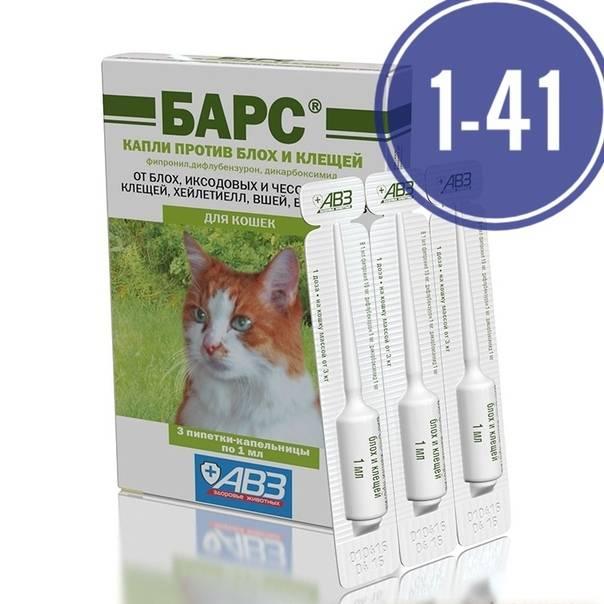 Какие капли от блох для кошек лучше выбрать: рейтинг топ-13 эффективных средств от паразитов