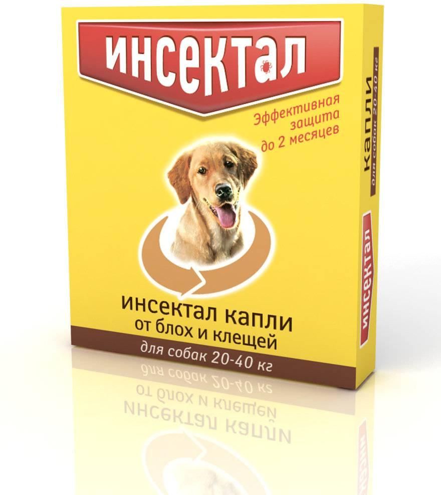 Капли для собак атакса от блох, вшей, власоедов (10-25кг веса) капли, 2.5 мл