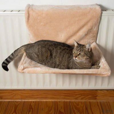 Лежанка для кошки своими руками: идеи, выкройки, материалы, рекомендации - handskill.ru