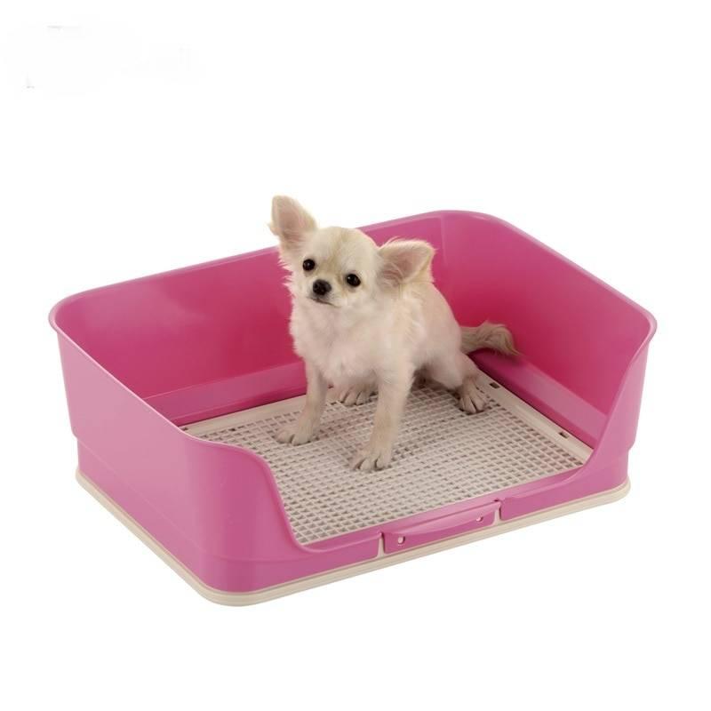 Основные виды и критерии выбора лотка для собаки