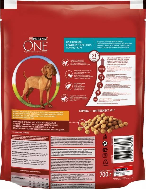 Топ-8 лучших сухих кормов для собак – рейтинг 2021 года